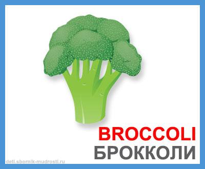 брокколи - овощи на английском языке