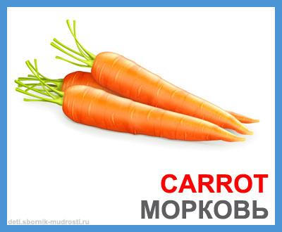 морковь - овощи на английском языке