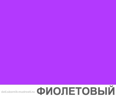 картинка фиолетового цвета