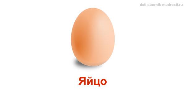яйцо - предмет овальной формы