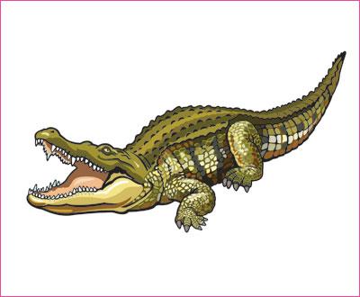 договорка на английском языке про крокодила