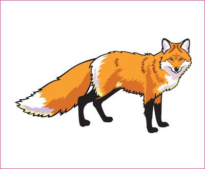 договорка на английском языке про лису
