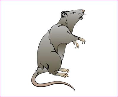 договорка на английском языке про мышь