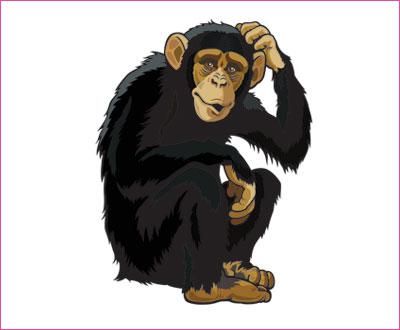 договорка на английском языке про обезьяну
