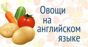 Овощи на английском языке с переводом