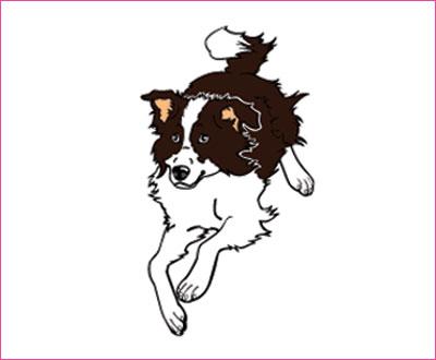 договорка на английском языке про собаку