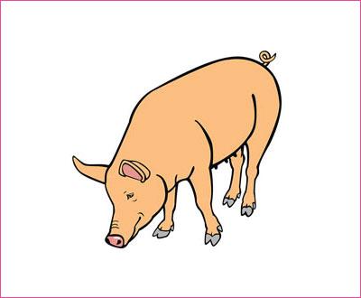 договорка на английском языке про свинью