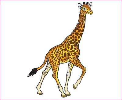 договорка на английском языке про жирафа